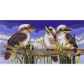 Kookaburra line up