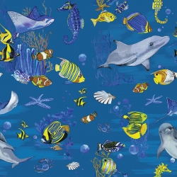 Australian Marine Life